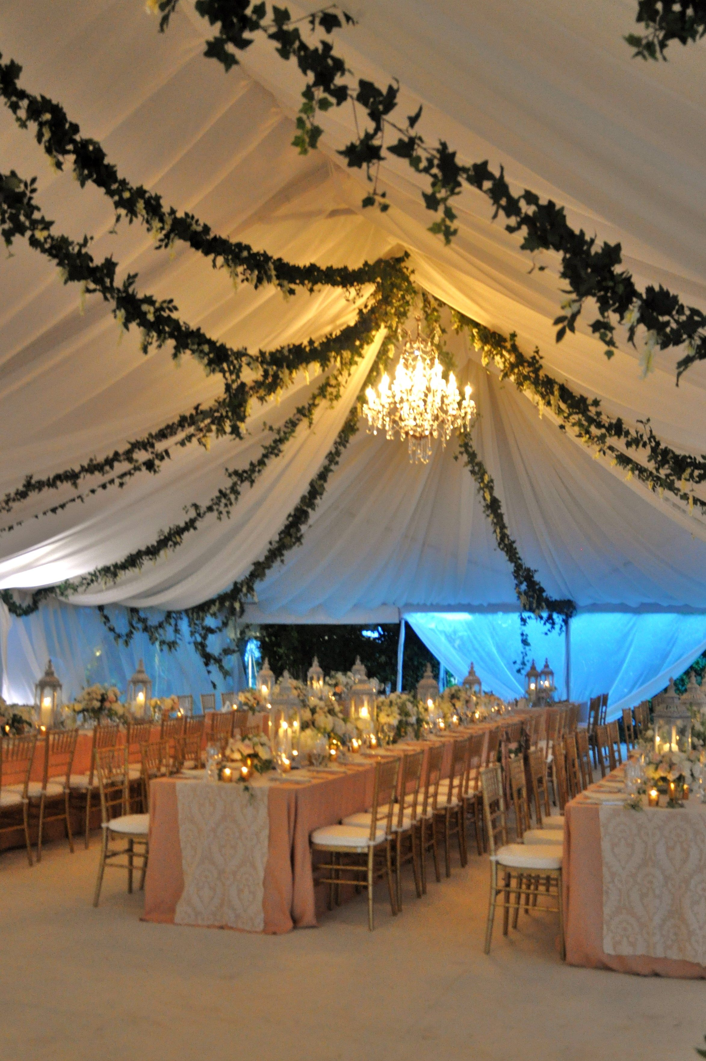 tent decor hanging vines and large crystal chandeliers pale pink linen overlays with ivory lace table runners and accented with gold glass holders and