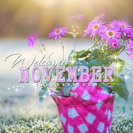 Welcome November Pictures #hellonovemberwallpaper Welcome November Pictures #hellonovemberwallpaper