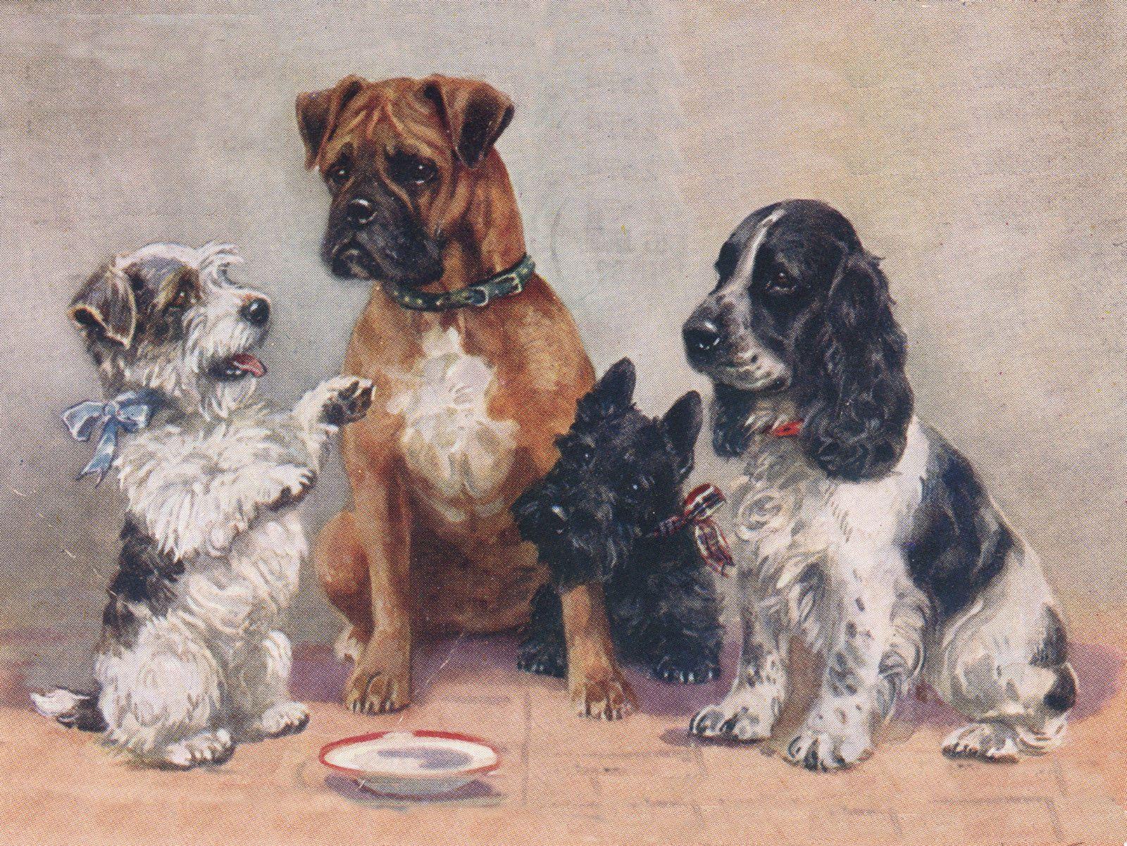 Boxer Ebay Collectables Dog Print Art Dog Art Dog Print