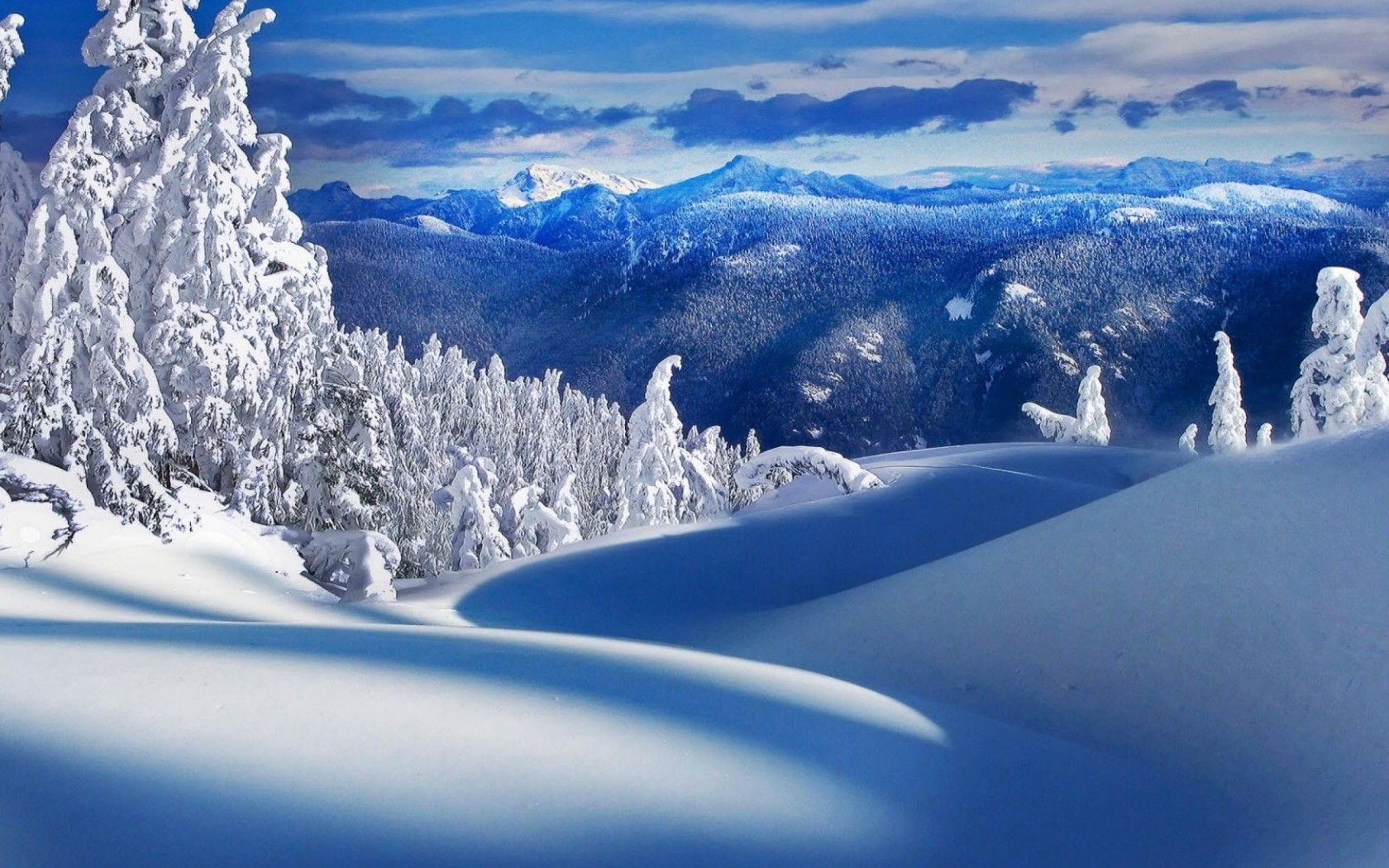 Epic Snow Scene With Rebels Book 1