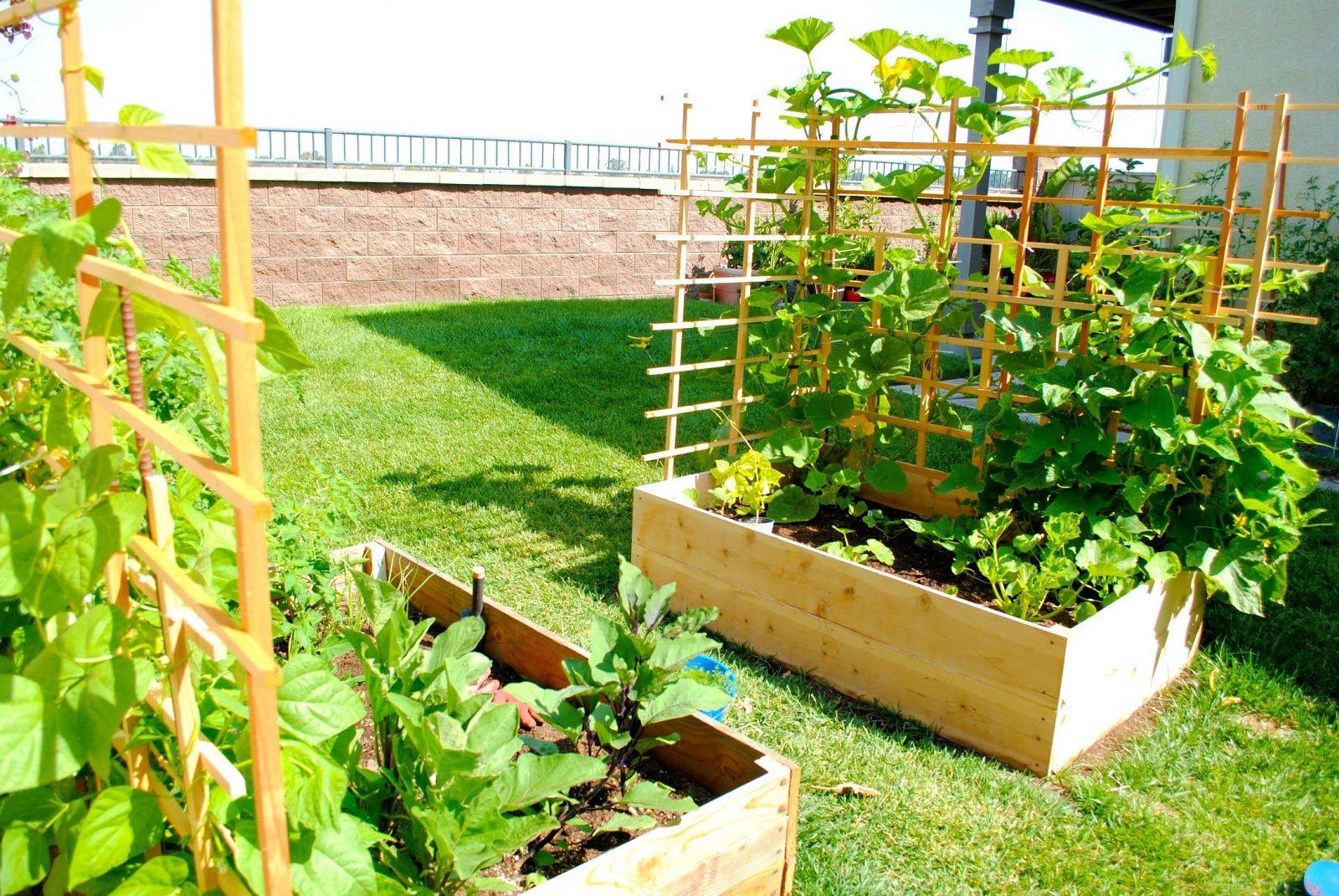 Pretty Backyard Gardening And Climate Change Backyard Design