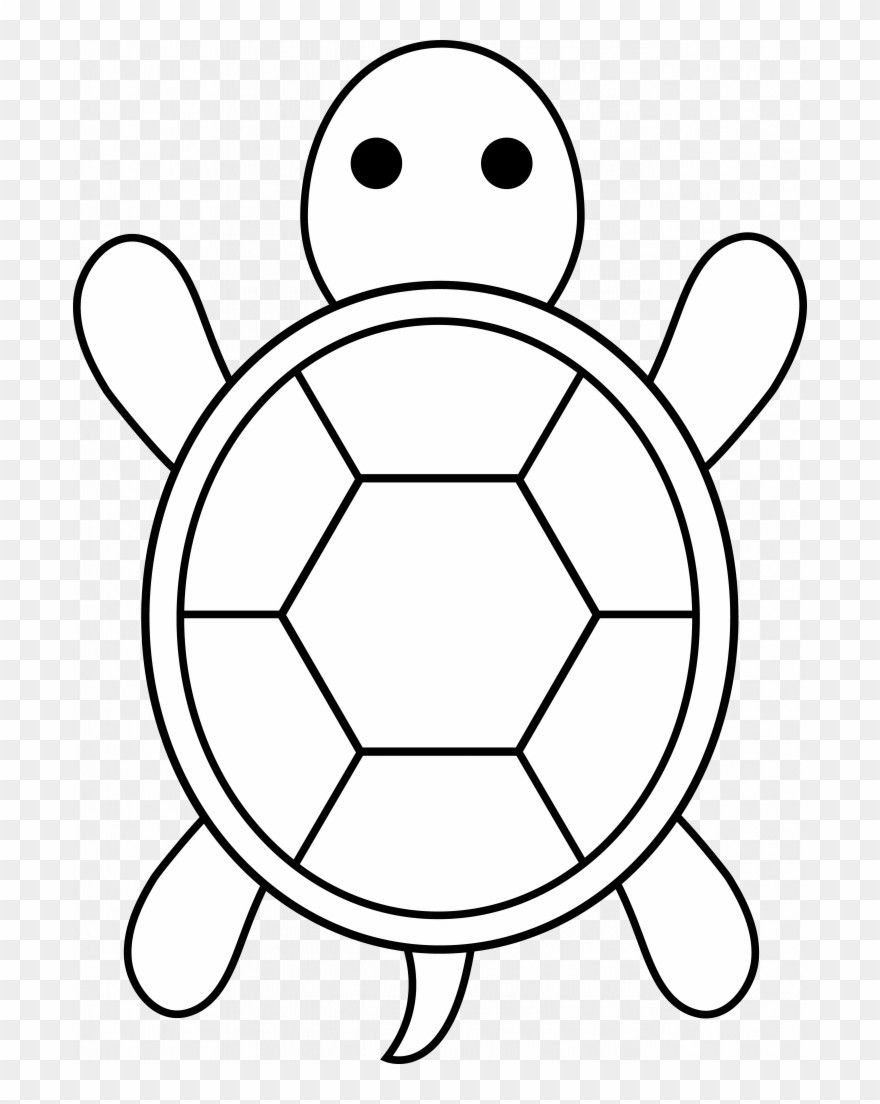 Simple Turtle Coloring Page in 2020