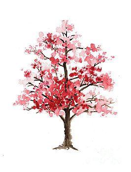 Cherry Blossom Tree Minimalist Watercolor Painting By Joanna Szmer
