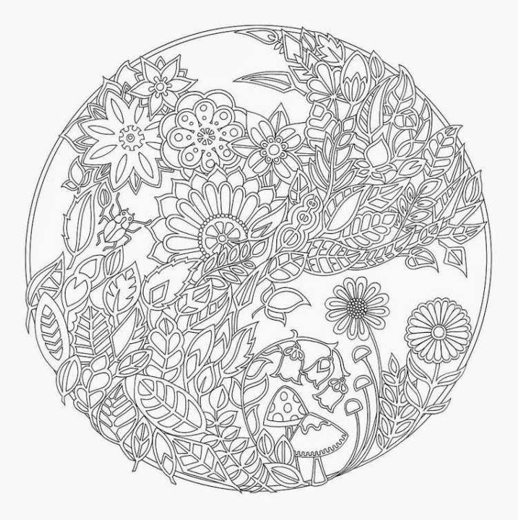 wunderschöne Herbst Mandala mit pflanzlichen Motiven   Malvorlagen ...