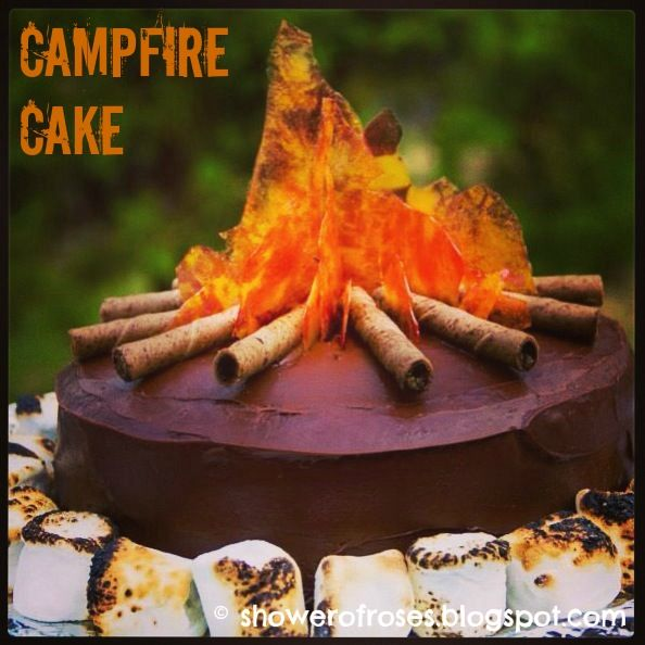 Shower of Roses: A Lone Ranger Campfire Cake- Looks super easy from the step by step directions and so cute for a camping theme party or just a summer fun BBQ!