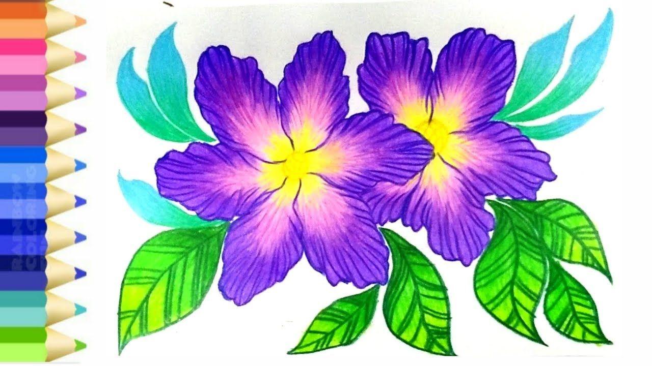 How To Draw And Coloring Flower L วาดภาพระบายส ดอกไม สวยๆ ตามจ นตนาการ จ นตนาการ ดอกไม สวย ๆ ดอกไม