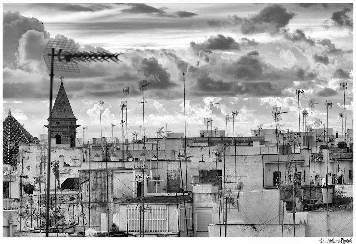 Cádiz 2015 - Javi de Lara - Álbumes web de Picasa