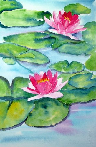 Florals In 2020 Water Lilies Painting Lilies Drawing Flower Art