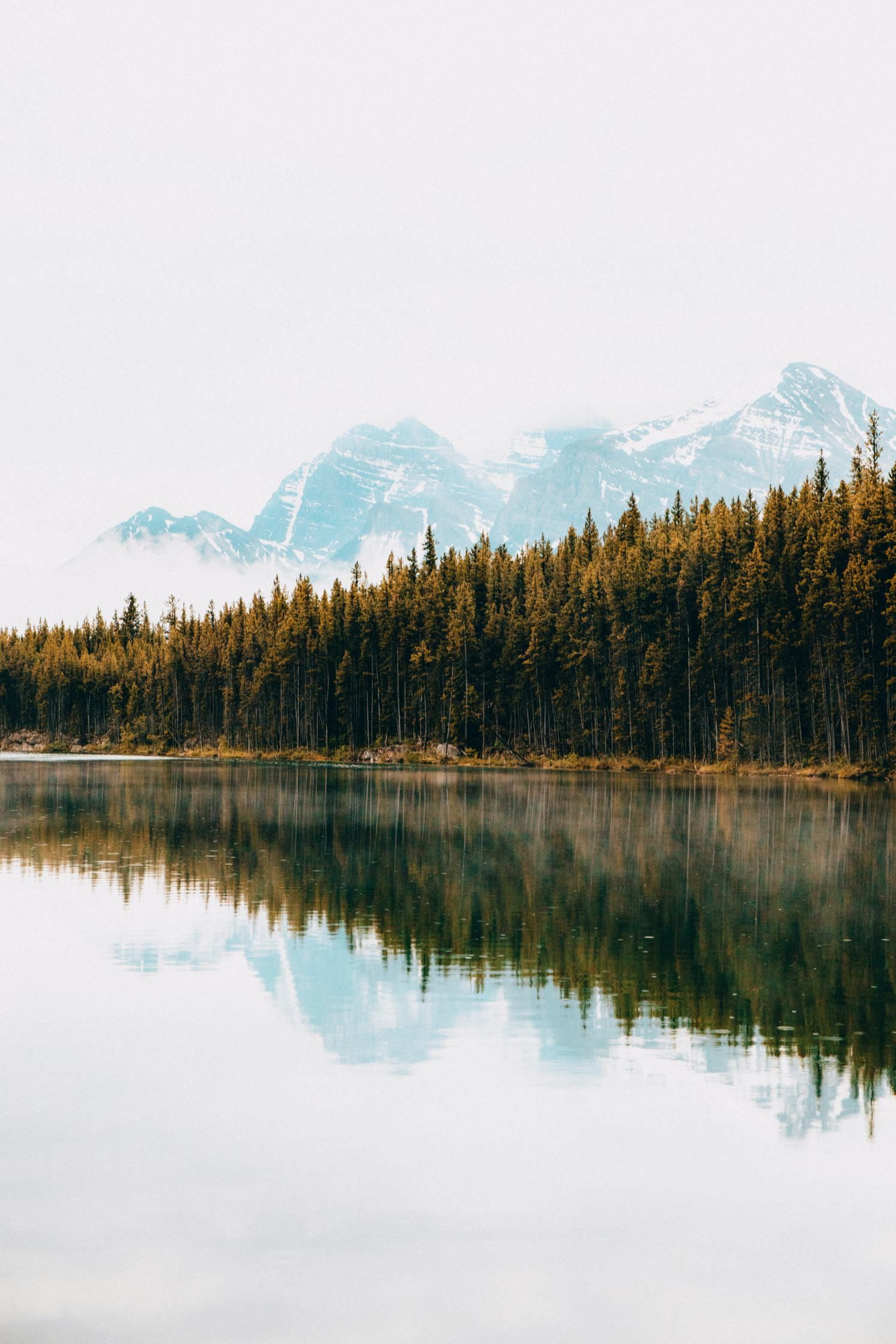 The 8 Most Amazing Photo Spots In Jasper National Park #landscapephoto