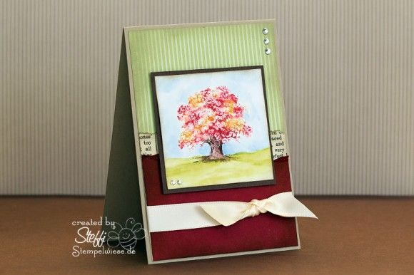 Video Anleitung - How I make a card • Stempelwiese