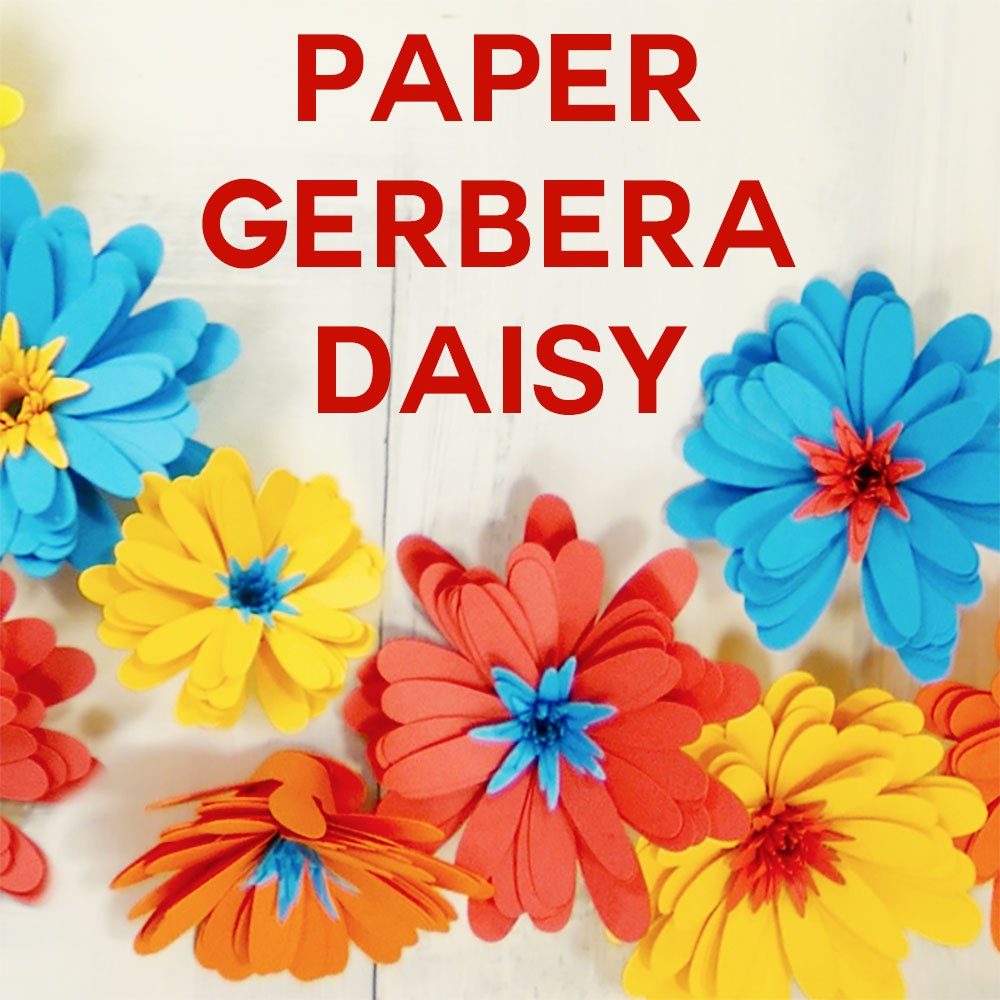 Paper Daisy An Easy Rolled Flower Paper daisy, Rolled