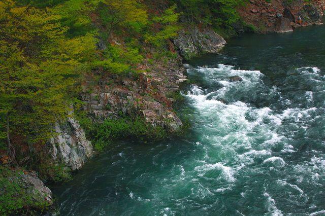 The fresh green and mountain stream ( Iwate ,Japan ) Author: Hitomi Zama.