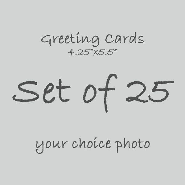 Bulk Set 25 Greeting Cards Blank Card Birthday Thank You Note