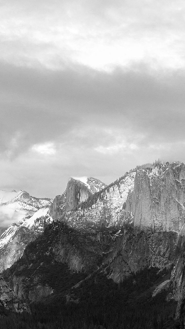 Dark Grayscale Mountains Forest Landscape Iphone 5s Wallpaper Download Iphone Wallpapers Ipad Wallp Iphone 5s Wallpaper Dark Landscape Grey Wallpaper Iphone