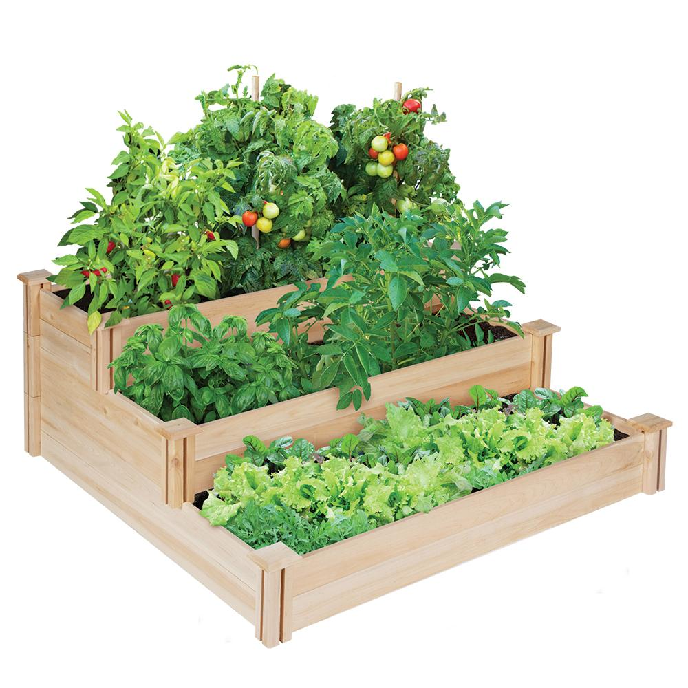Original Cedar Raised Garden Bed 3 Tier 4 Ft X 4 Ft Rc4t3 Vegetable Garden Raised Beds Cedar Raised Garden Cedar Raised Garden Beds