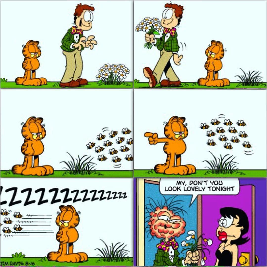 Pin By Karen Godin On Quality Memes Garfield Garfield Comics Positive Motivation