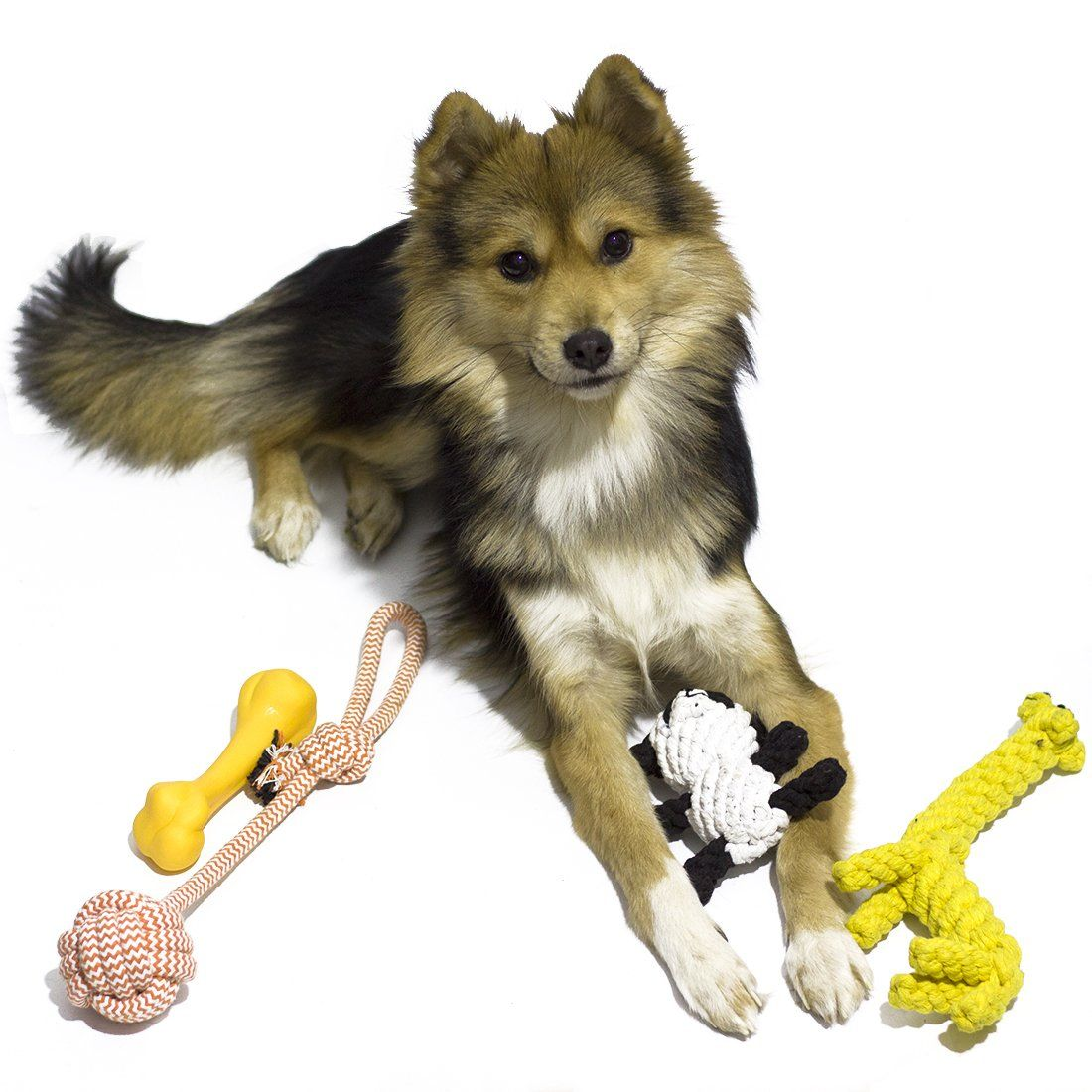 6 Pack Great Durable Puppy Ropes Teething Chew Toys Promotes