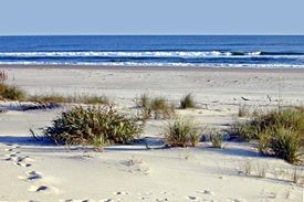 Hammocks Beach State Park Swansboro Nc Accessible Only By Penger Ferry Or Private Boat There S Just One Thing At That Crowded The
