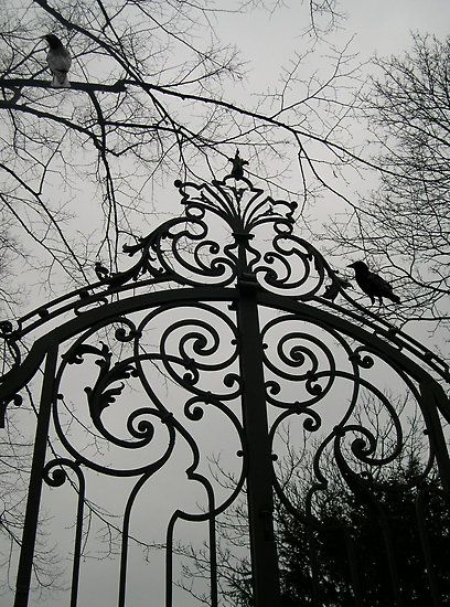 Image result for Gothic crow on a castle gate