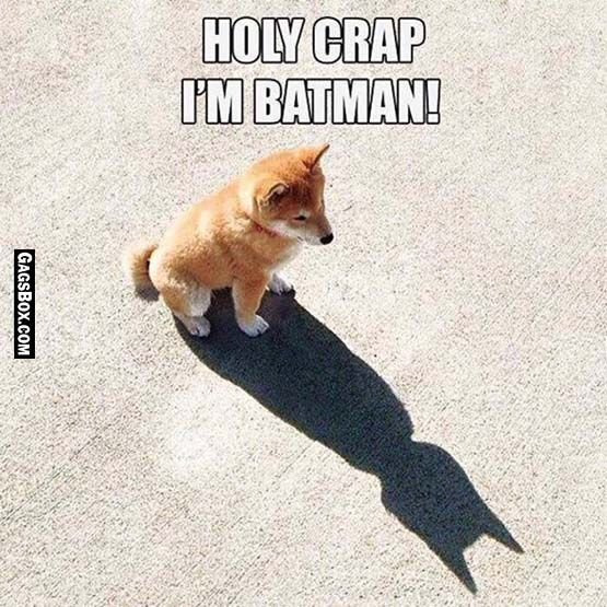 Dog version of Batman