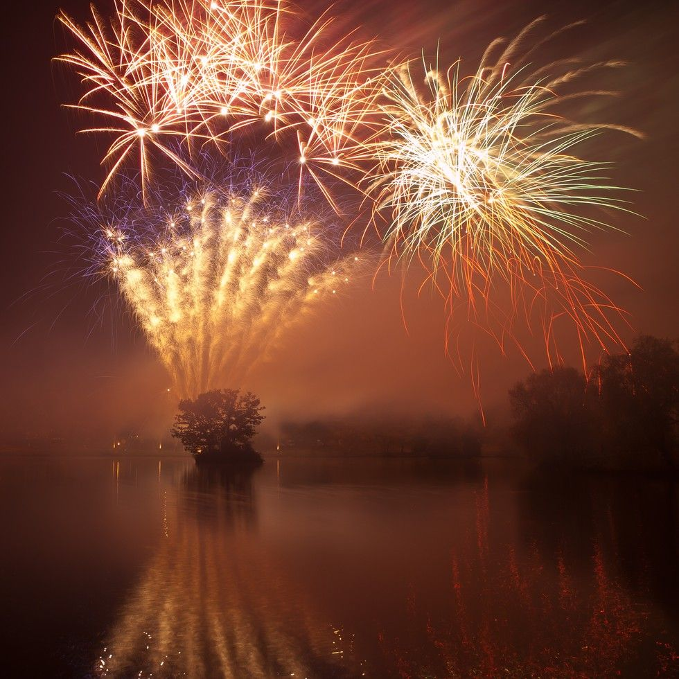 Common Firework Pollutants Detected in Shark Bodies. The splashy light shows are often displayed over water and can deposit harmful chemicals in the sea.