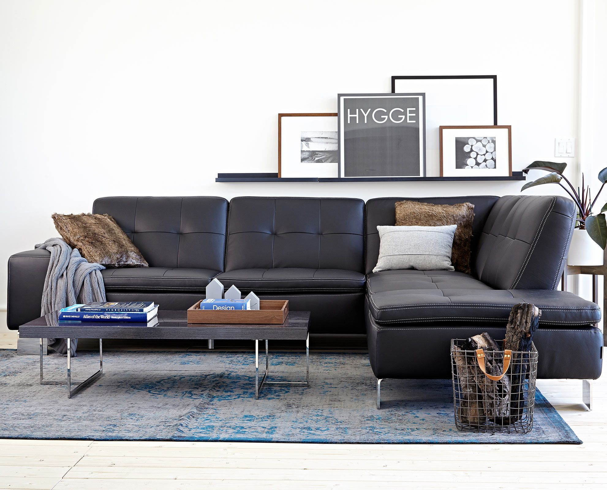 Francesca Leather Sectional from Scandinavian Designs leather