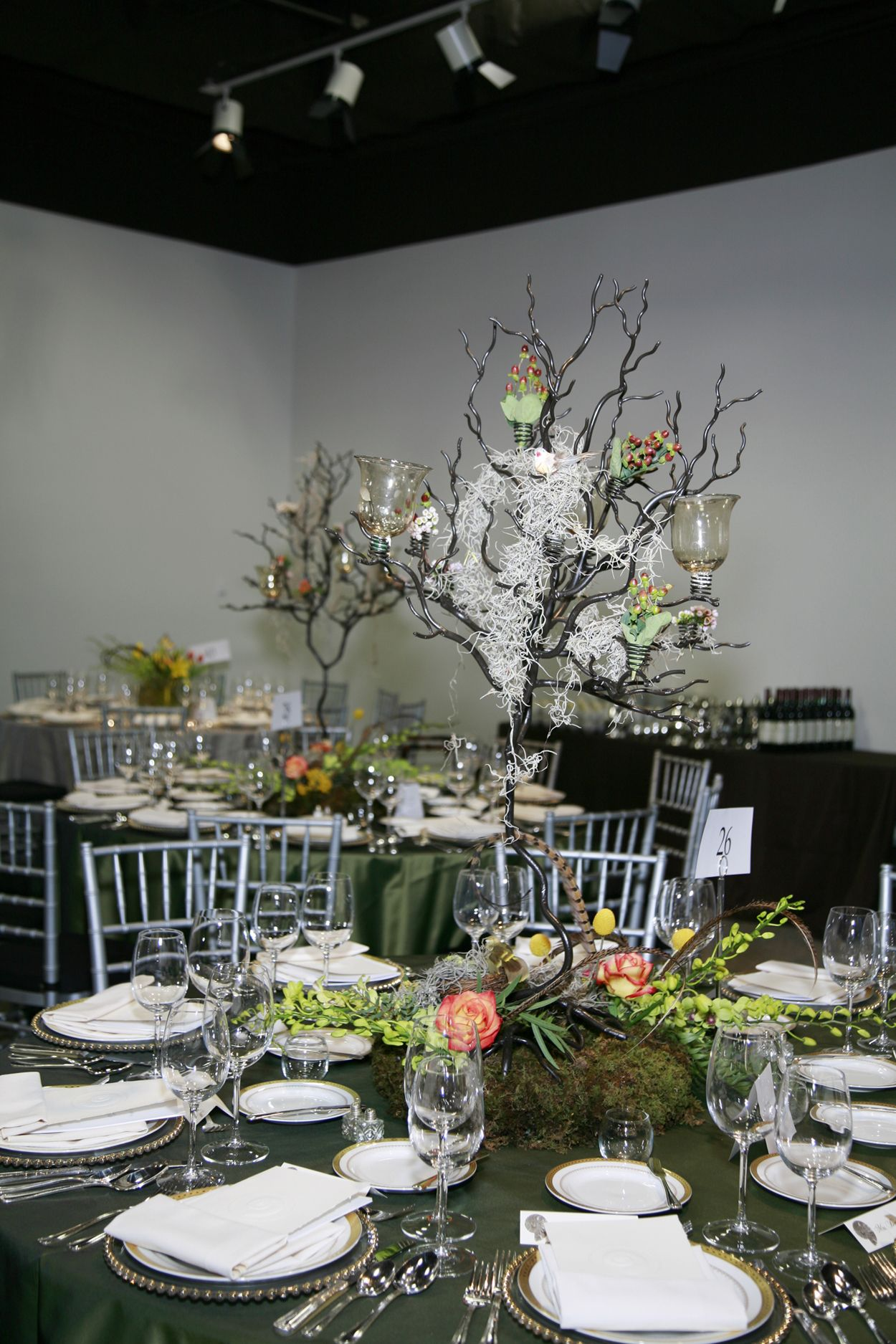 Event Place Setting At The Virginia Museum Of Natural History In