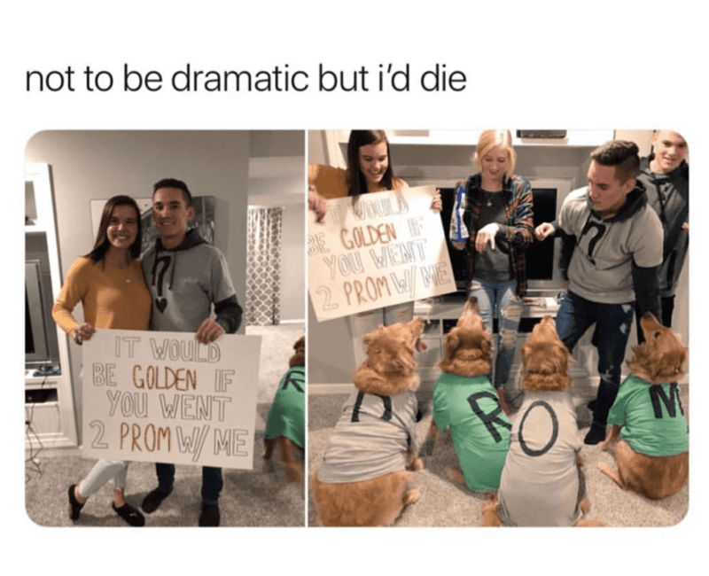 17 Wholesome Memes Tweets To Start The Week Off Right Cute Prom Proposals Prom Proposal Homecoming Proposal