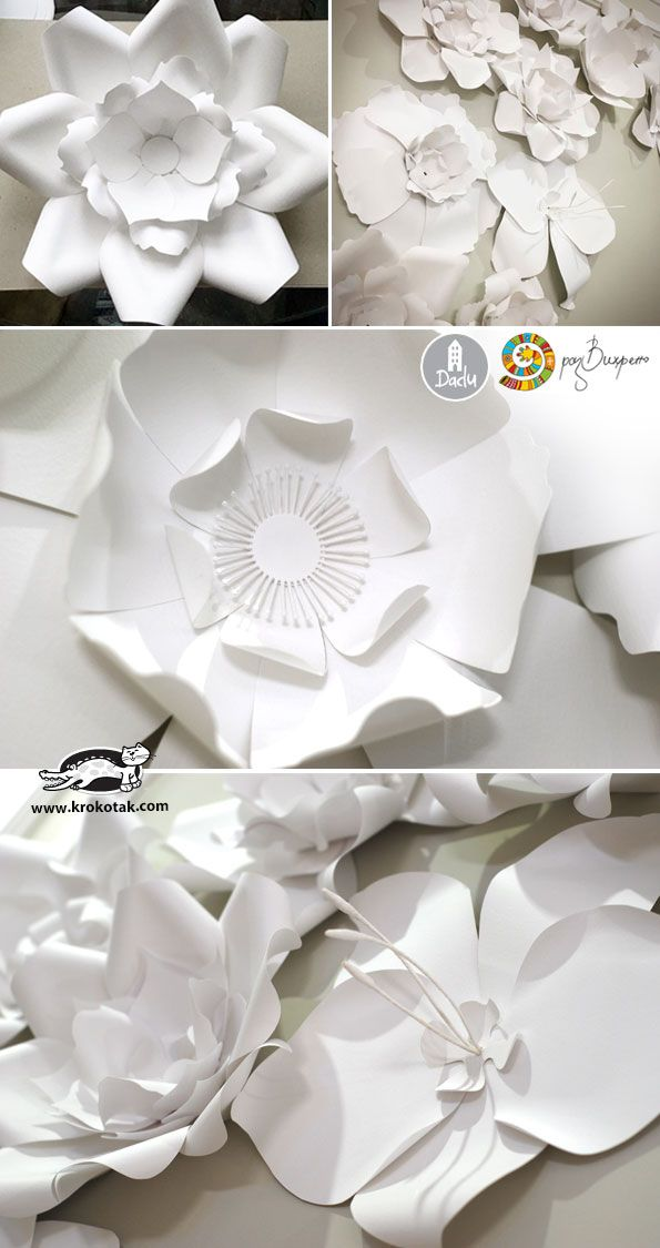 White Paper Flowers Kids Papercraft Pinterest Paper Flowers