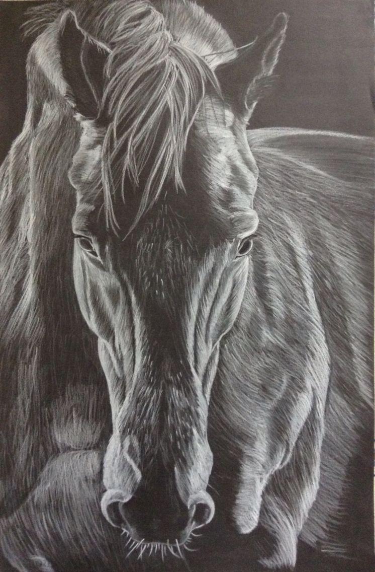 Dessin cheval crayon blanc sur fond noir animaux art art drawings et horse art - Dessins de chevaux facile ...