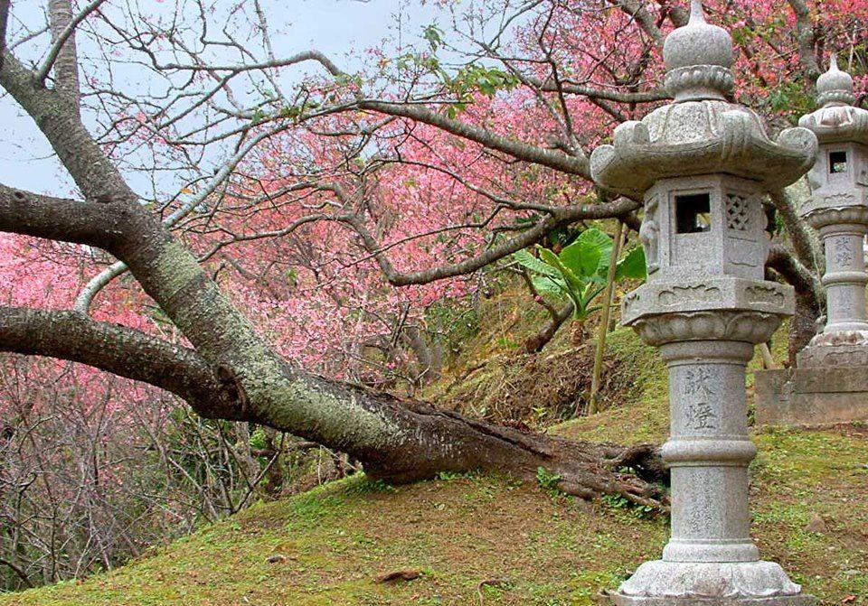 Katsuren Castle Ruins – Okinawa – Japan Resort Club |Okinawa Japan Ruins