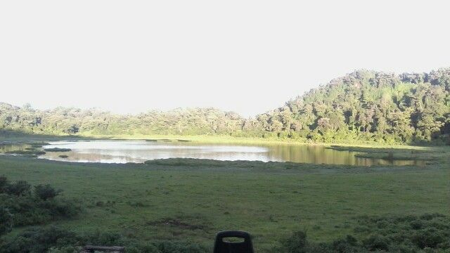 Elephants pool,View
