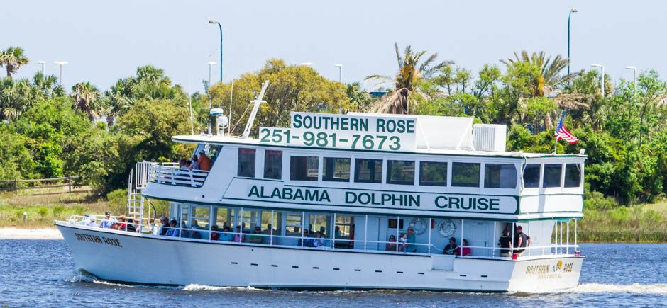 Dolphin Tours Can Bring Cooler 20 2 Hr Sunset Cruise In Orange Beach And Gulf Ss Al
