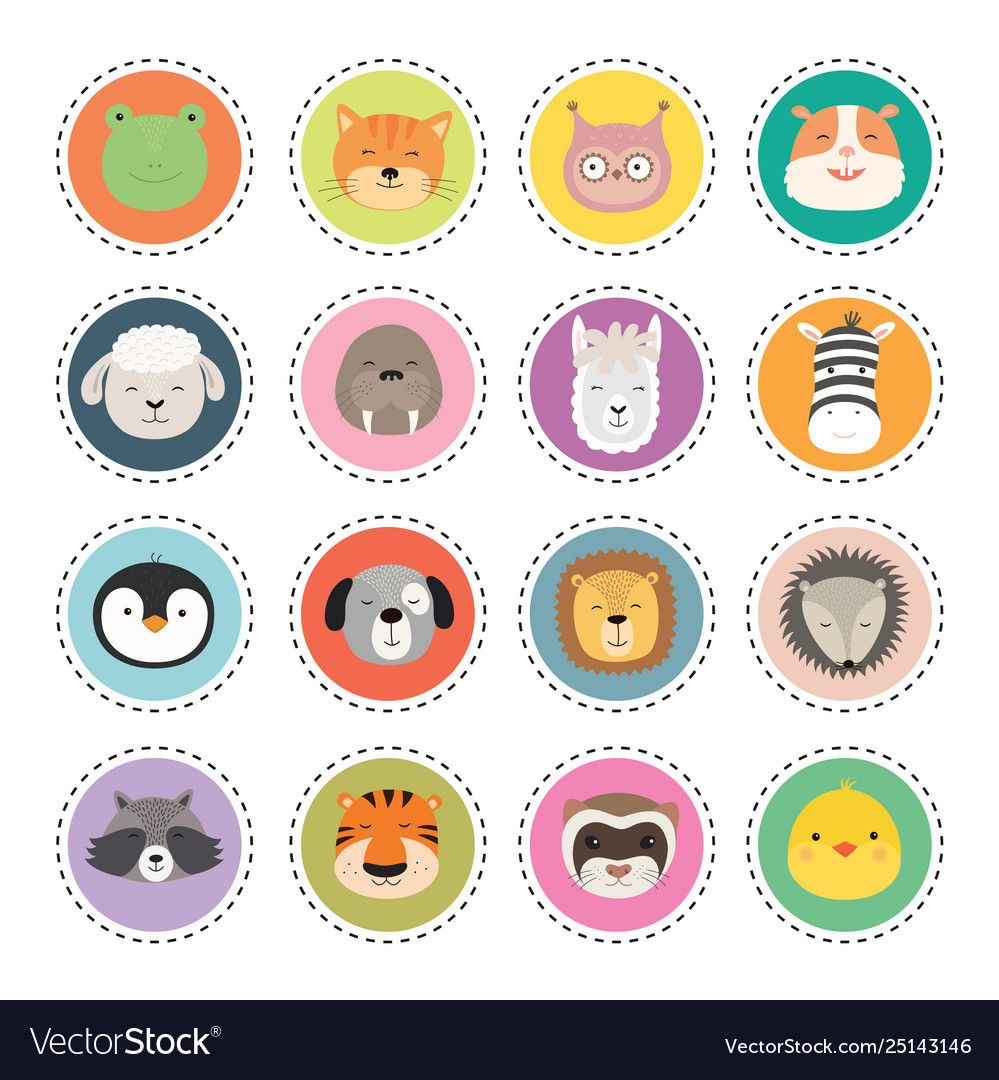 Set cute animal faces stickers vector image on