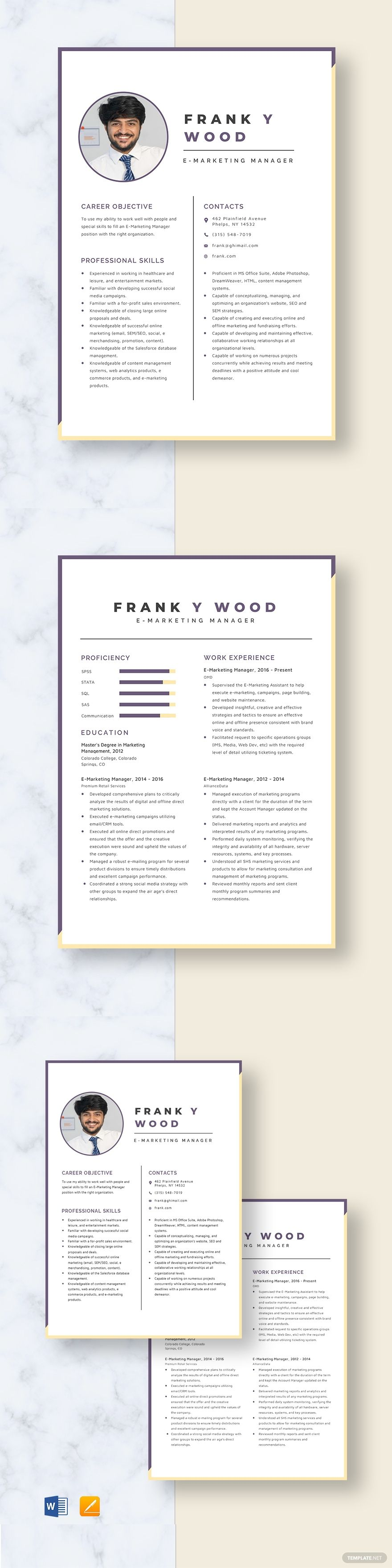 Emarketing manager resume template in 2020 manager