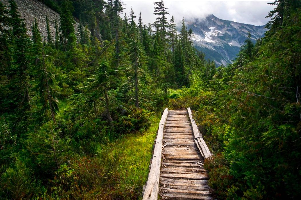 What You Need to Know About the 1,200-Mile Pacific Northwest Trail