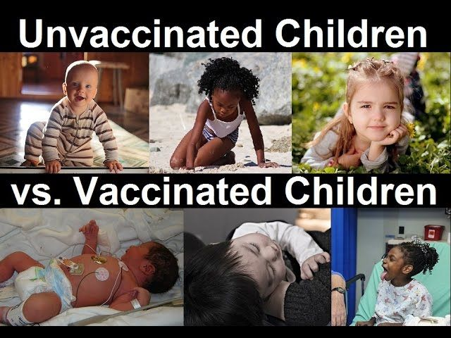 First Ever Study of Unvaccinated Vs. Vaccinated Kids, Pulled from Journal, Erased from Internet Cba0c0b465091dd2889d0822b45a072c