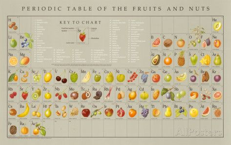 Periodic table of the fruits and nuts educational food poster periodic table of the fruits and nuts educational food poster posters by naomi weissman at allposters urtaz Gallery