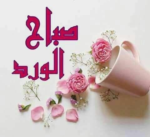 Pin By Aliya Hamza On صباح الخير Good Morning Flowers Morning Greeting Beautiful Morning