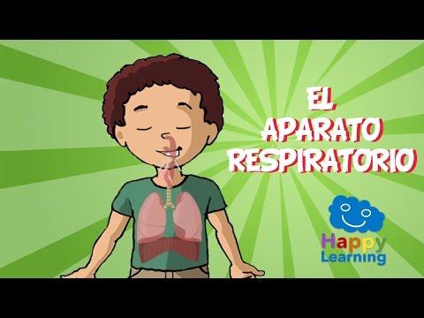 El Aparato Respiratorio Videos Educativos para Niños