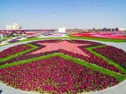 Things to Do in Dubai - a Visit to the Miracle Garden ...