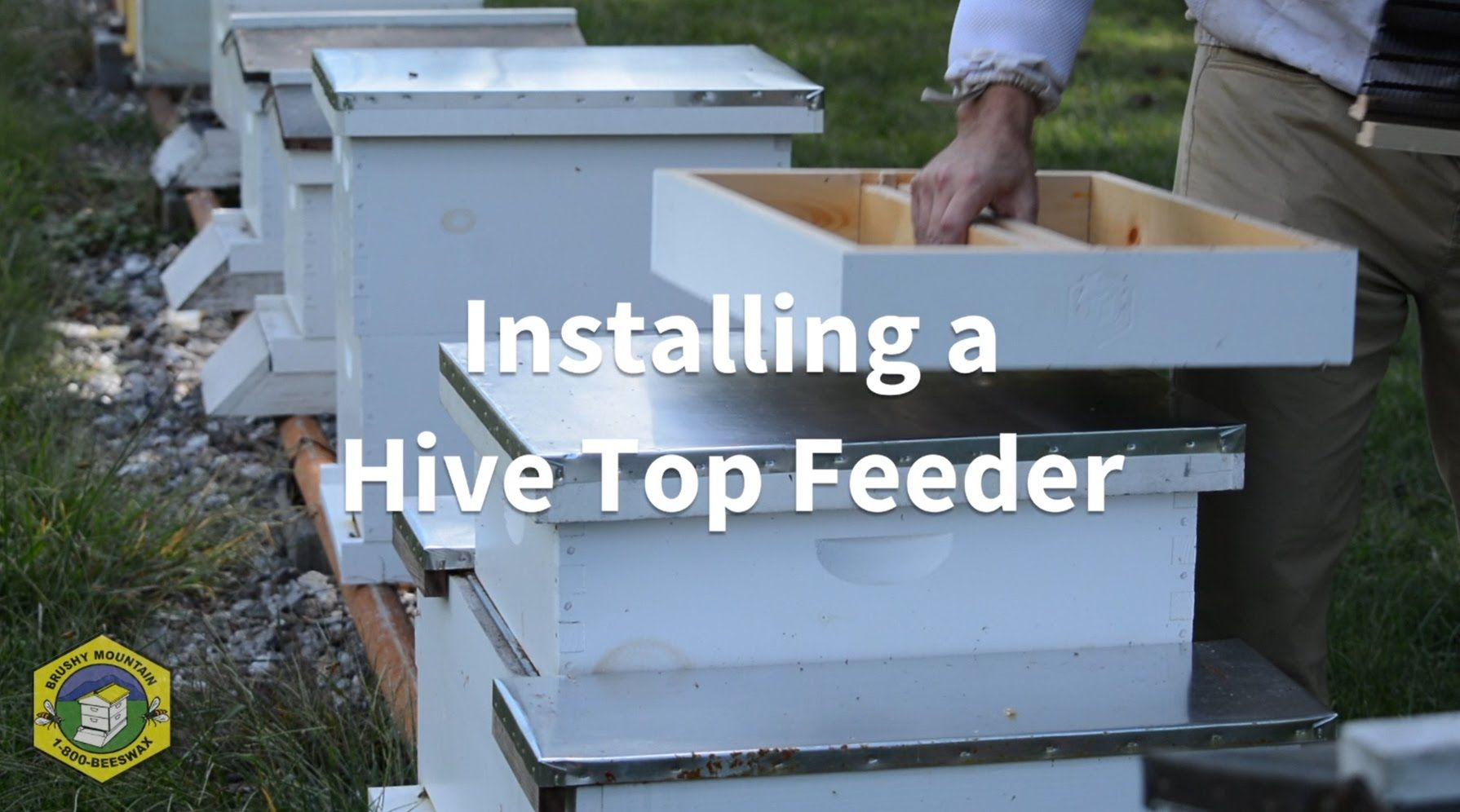 Installing a Hive Top Feeder (With images)   Hives, Bee ...