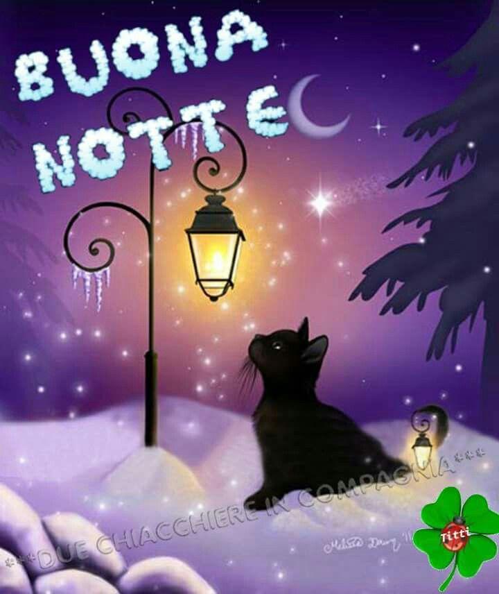 Buonanotte Gatto Buona Notte Buonanotte Dolci
