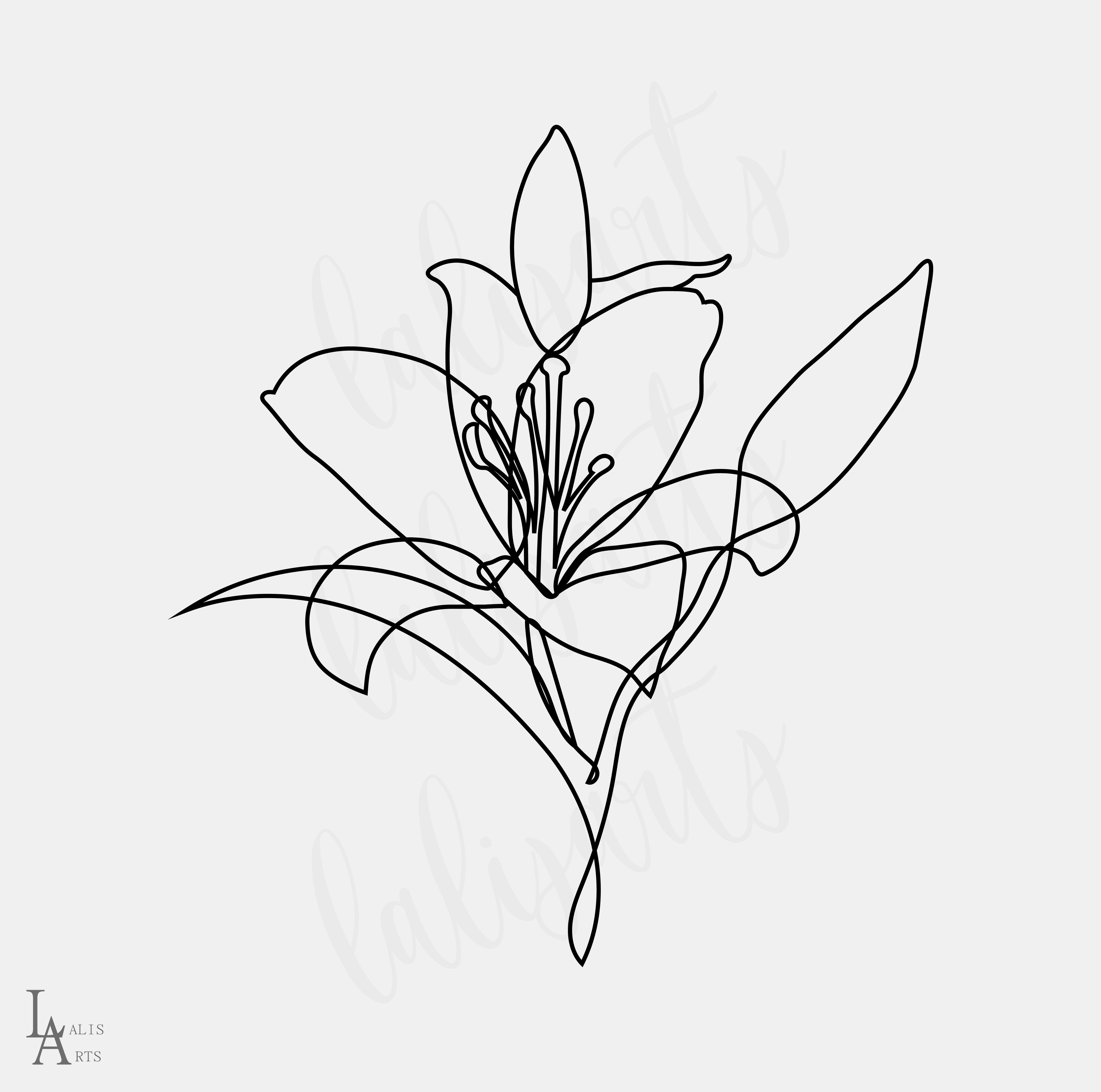 Lily Floral Sketch Clipart Png Digital Design Download Sublimation Graphics Png Continuous Flower Illustration Lalis Arts Lilies Drawing Flower Illustration Flower Drawing