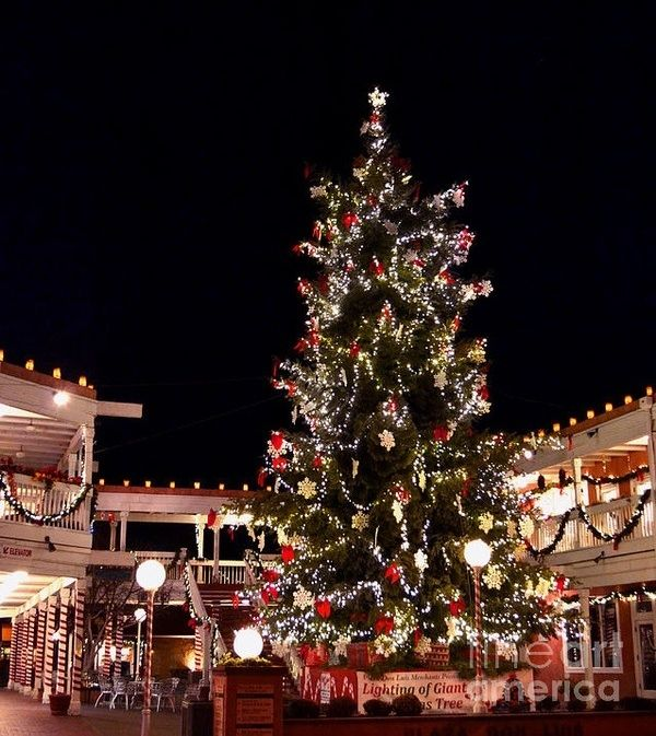 The Old Town Albuquerque Christmas Tree New Mexico Christmas In America Christmas World Mexico Christmas