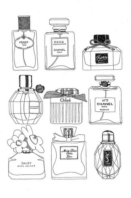 Photo of couture perfume bottle ink drawings
