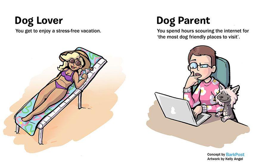 7 diferenças entre gostar de cães e ser dono de um cão | Tá Bonito