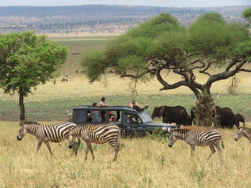 8 Amazing African Safari Lodges You Haven T Heard Of Yet In 2020