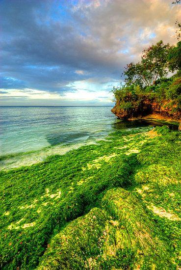 Panglao Island. Bohol, Philippines.