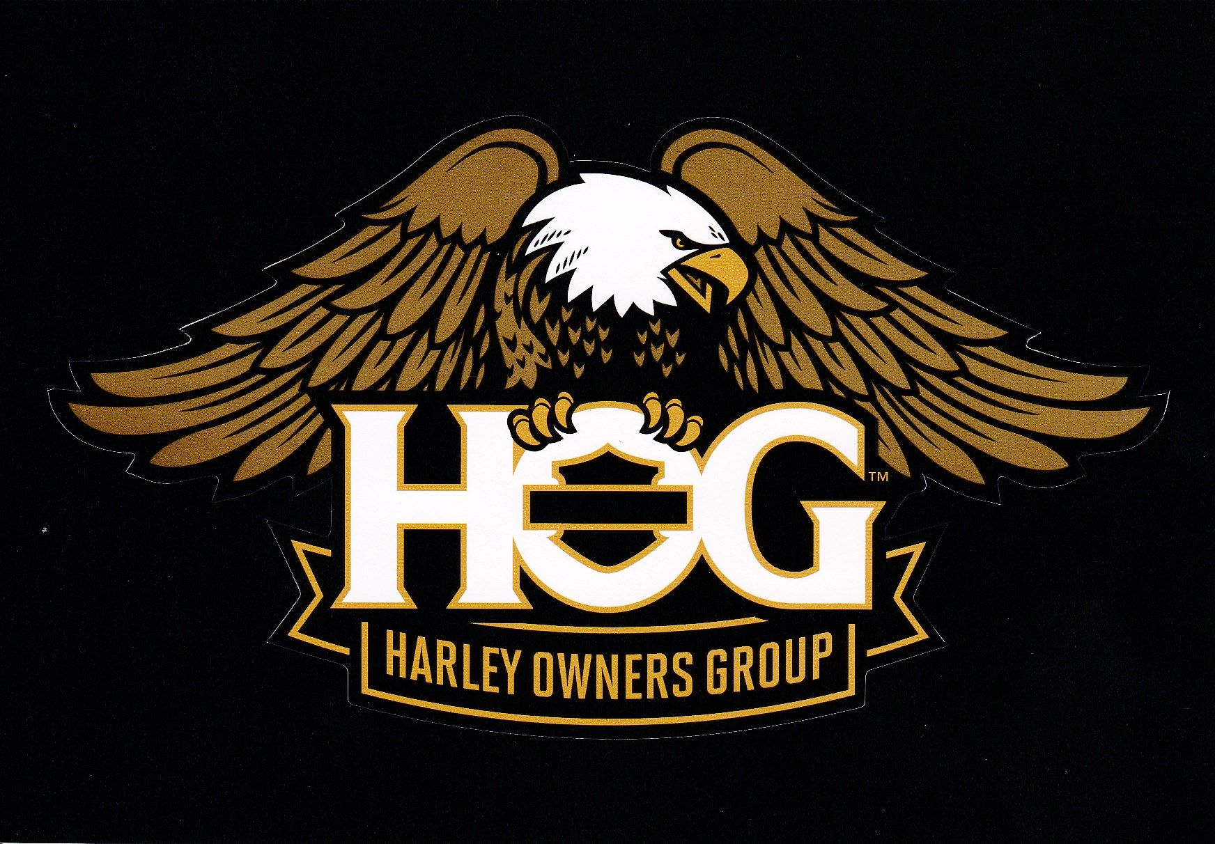 Harley Owners Group New Logo Harley davidson patches